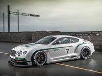Bentley Continental GT3 Concept 2012 poster