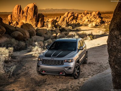 Jeep Grand Cherokee Trailhawk 2017 poster #1250883