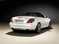 Mercedes-Benz SLK 2LOOK Edition 2009 poster