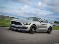 Ford Mustang Shelby GT350R 2020 poster