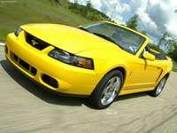 Ford Mustang SVT Cobra Convertible 2004 poster