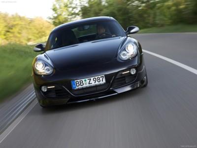 TechArt Porsche Cayman 2010 poster #523831