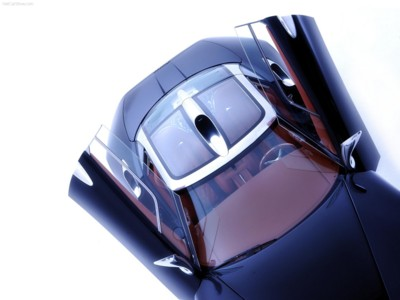 Spyker C8 Laviolette 2006 poster #547554