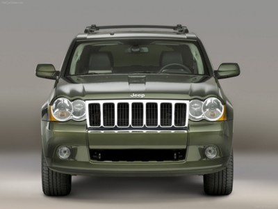 Jeep Grand Cherokee 2008 poster #578711