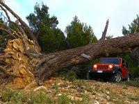 Jeep Wrangler 2012 poster